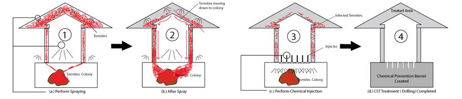 Pest Controls Services Termite Control Baiting System
